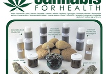 Cannabis For Health / The North Island Compassion Club has been providing cannabis for therapeutic and medicinal purposes for over 10 years. Cannabis for Health is a new project that aims to inform people about the beneficial uses of cannabis.