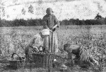 CVN eten uit 1 pan 1880