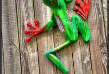 Gota love frogs
