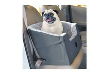 Top 10 Best Car Seat for Dogs in 2016 Reviews