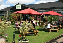 Summer / Summer is time for enjoying all the work you put in in Spring. Sit out in your garden and enjoy the sunshine, have friends around for BBQ's and if you fancy going out, relax in out courtyard with some lunch.