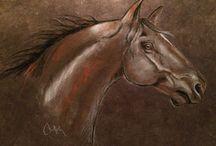 artiste équin