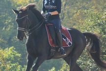 horseriding outfit