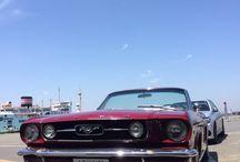 Tokyo Bayside Motors