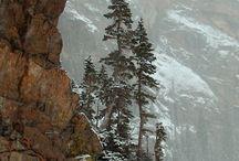 Pegunungan rocky