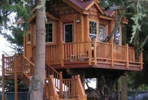 Tree houses / Little houses for trees that just look dull!