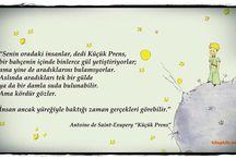 Little Prens ⭐️