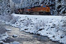 Snow / by Brad N Ann Moore