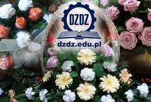 OKZ Złotoryja / OKZ Złotoryja -ul.Kolejowa 4, Złotoryja - tel. 76 878 58 55, e-mail: okz.zlotoryja@dzdz.edu.pl - Kursy zawodowe i Szkolenia - DZDZ Kursy i Szkolenia