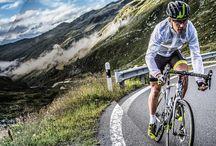 Bike brands we stock