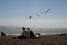 Brighton / Photos taken around brighton.