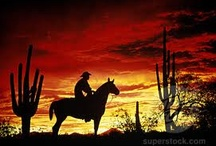 I love a cowboy / by Tracy Teeter