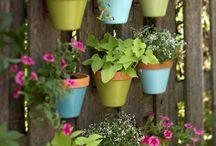 Vertical Gardening / by America's Best Energy Team