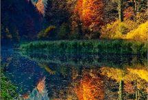 Why I love Autumn