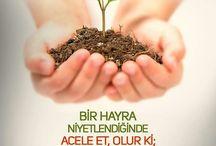 Hz. Ali r.a / Hazreti Ali (Râdıyallahu Anh)