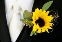 Wedding / by Sara Hargis