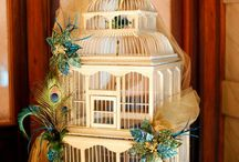 Bird Cages / by Kimberly Winters-Armstrong