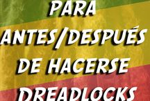 Dreadlocks / La melena del León de Judá