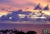 Sunrise, Sunset / by Sherree Wells