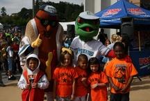 AquaSox Fans / by Everett AquaSox