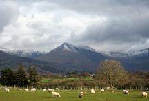 Wales / by Anne Elzenaar