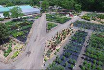 Jardin2m vue des airs / Images spectaculaires, à vol d'oiseaux