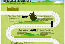 Fall Lawn Care / Anything and everything informative about fall lawn care.