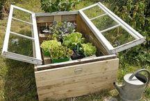 Si j'avais un jardin...