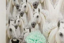Paarden interieur