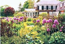 garden / by Sheryl Read-slaughter