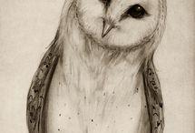 draw inspiration / by Ashley Marie Kumm