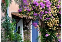 Provence  / Our detour to the south of France! / by Choix