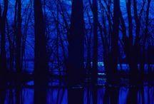 the blues / for edwyn collins  'blue boy'