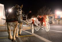 Romantic Rides / Nothing says romance like a horse drawn carriage!