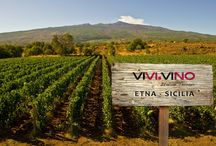 Italian Terroir / i migliori territori vitivinicoli Italiani.