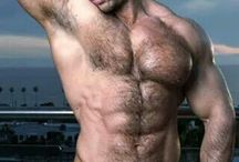 Zeb Atlas Collection