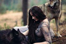 волки, лисы и псы