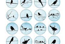 üvegmedálok