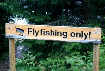 Fly Fishing Conservation / Protecting waters all over the world is important to all fly fishers- a place for exchanging ideas and hope.