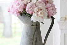 Flowers I Love / by Miranda McBride Hoffman