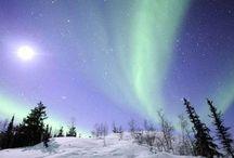 Alaska & Northern Lights / by Enid McDaniel