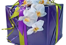 Herma's Free Gift Wrapping / Order gifts from our registry and you are entitled to Herma's over-the-top gorgeous gift-wrapping for FREE.