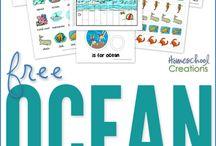 summer: ocean/beach theme