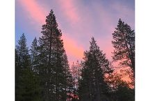 Donner Memorial State Park / by CA State Parks