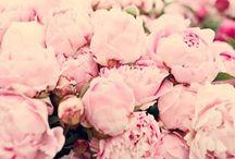 { Think Pink }