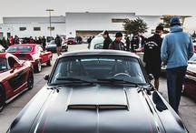 Mustang...........