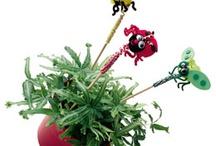 Fun for Kids / Gardening is Fun! Hey Kids...show us your stuff!