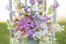Luční květiny