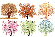 "⊰ Trees ⊱ / ""Trees enrich our lives throughout the year.  They reassure us with the rustle of their leaves, give us shade to soothe our overheated bodies and they bring delight to us when we watch birds nest in their boughs.  However, it is only during the fall that they wave flamboyant foliage that seems to demand our attention.""--  Blue Ridge Parkway: A Guide to Trees   / by ✿⊱╮Janice Caldwell"