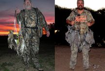 Wing Shooting / High volume doves, pigeon, and ducks at TGB Outfitters Argentina.